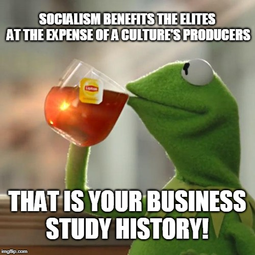 SOCIALISM BENEFITS THE ELITES AT THE EXPENSE OF A CULTURE'S PRODUCERS STUDY HISTORY! THAT IS YOUR BUSINESS | image tagged in memes,but thats none of my business,kermit the frog | made w/ Imgflip meme maker