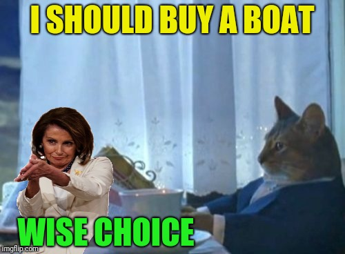 I Should Buy A Boat Cat | I SHOULD BUY A BOAT WISE CHOICE | image tagged in memes,i should buy a boat cat | made w/ Imgflip meme maker