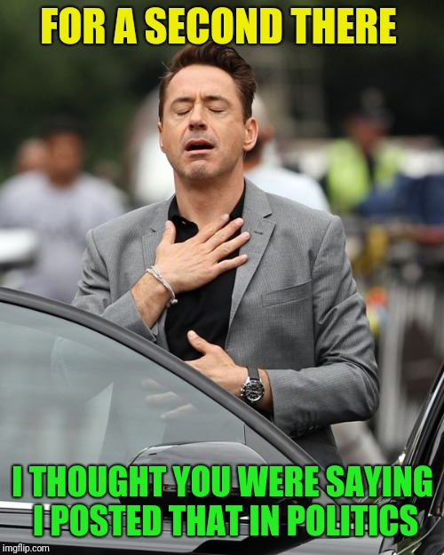 Robert Downey Jr | FOR A SECOND THERE I THOUGHT YOU WERE SAYING I POSTED THAT IN POLITICS | image tagged in robert downey jr | made w/ Imgflip meme maker