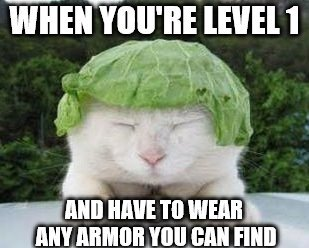 image tagged in funny cats,level,armor | made w/ Imgflip meme maker