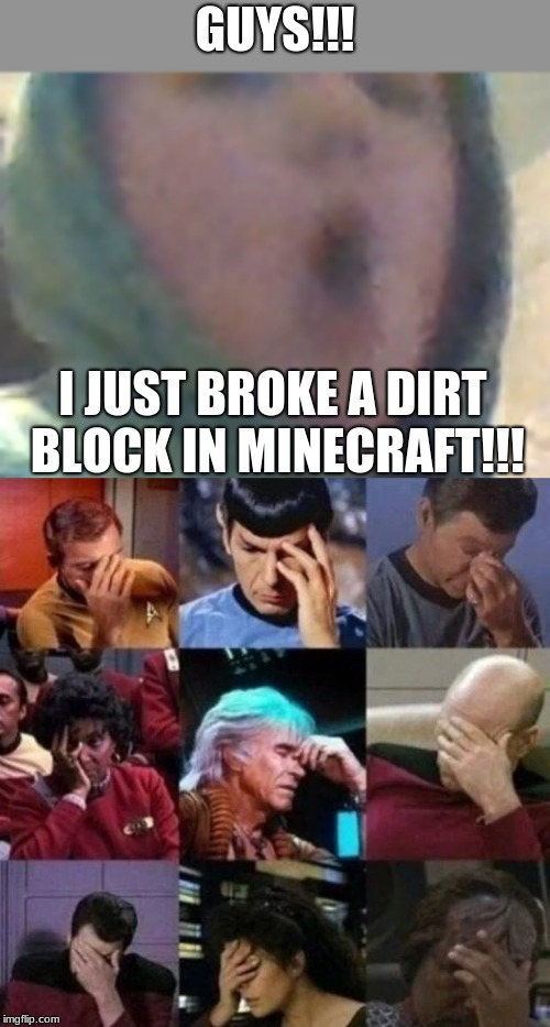 GUYS!!! I JUST BROKE A DIRT BLOCK IN MINECRAFT!!! | image tagged in star trek face palm | made w/ Imgflip meme maker