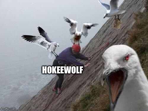 Angry Birds | HOKEEWOLF | image tagged in angry birds | made w/ Imgflip meme maker