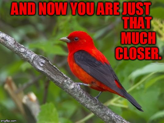 AND NOW YOU ARE JUST THAT MUCH CLOSER. | made w/ Imgflip meme maker