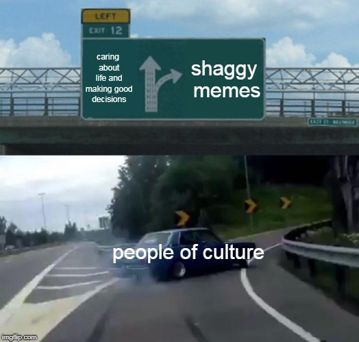 Left Exit 12 Off Ramp Meme | caring about life and making good decisions shaggy memes people of culture | image tagged in memes,left exit 12 off ramp | made w/ Imgflip meme maker
