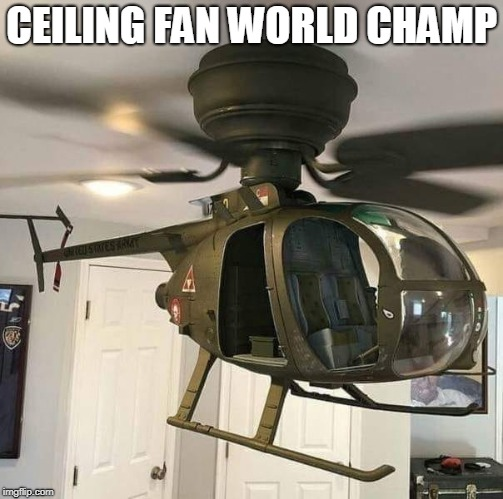 cool | CEILING FAN WORLD CHAMP | image tagged in ceiling fan,helicopter,world champion | made w/ Imgflip meme maker