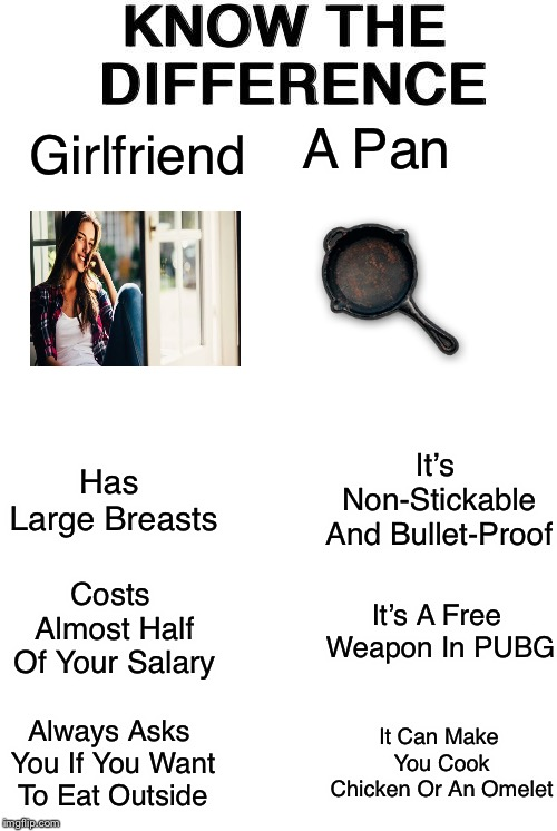 Know The Difference |  A Pan; Girlfriend; It's Non-Stickable And Bullet-Proof; Has Large Breasts; Costs Almost Half Of Your Salary; It's A Free Weapon In PUBG; Always Asks You If You Want To Eat Outside; It Can Make You Cook Chicken Or An Omelet | image tagged in know the difference,memes,girlfriend,pubg,cooking pan | made w/ Imgflip meme maker