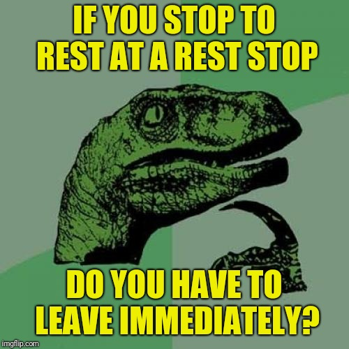Philosoraptor Meme | IF YOU STOP TO REST AT A REST STOP DO YOU HAVE TO LEAVE IMMEDIATELY? | image tagged in memes,philosoraptor | made w/ Imgflip meme maker