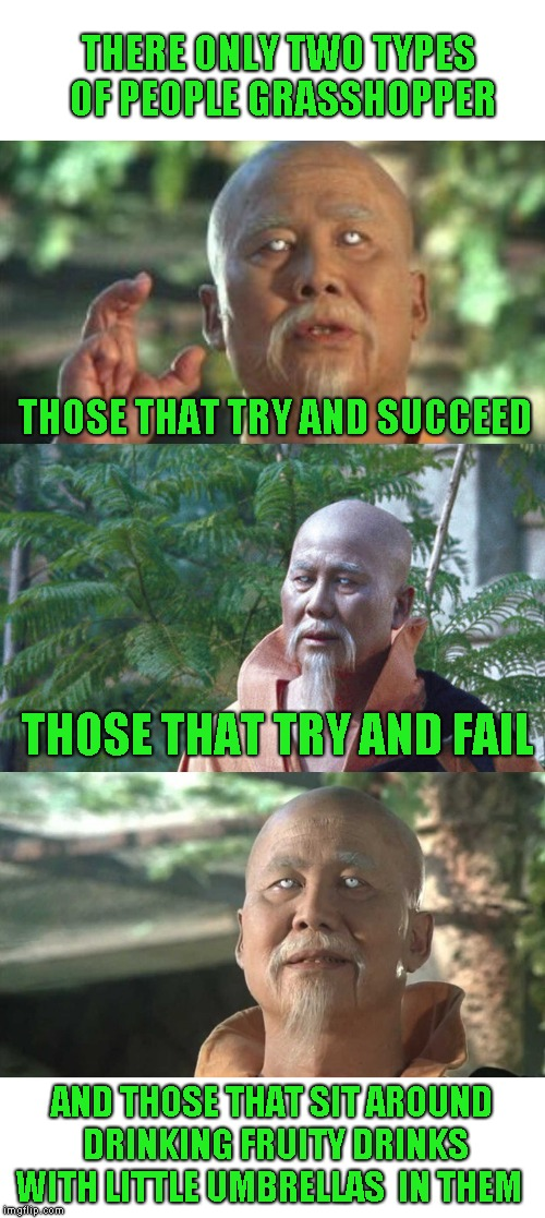 Worried about the youngsters getting the grasshopper reference. Oh well :) | THERE ONLY TWO TYPES OF PEOPLE GRASSHOPPER THOSE THAT TRY AND SUCCEED THOSE THAT TRY AND FAIL AND THOSE THAT SIT AROUND DRINKING FRUITY DRIN | image tagged in wise man say,kung fu | made w/ Imgflip meme maker