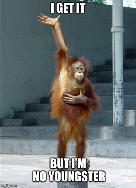 Monkey Raising Hand | I GET IT BUT I'M NO YOUNGSTER | image tagged in monkey raising hand | made w/ Imgflip meme maker