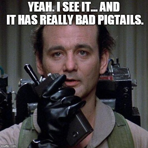 Ghostbusters  | YEAH. I SEE IT... AND IT HAS REALLY BAD PIGTAILS. | image tagged in ghostbusters | made w/ Imgflip meme maker
