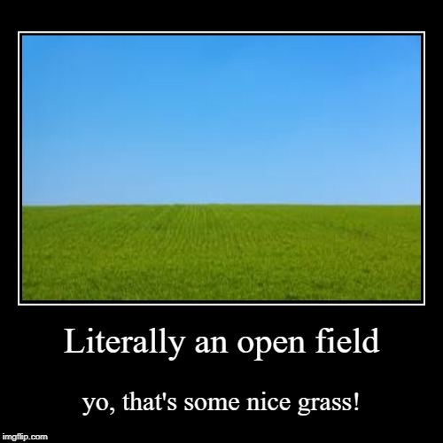 Literally an open field | yo, that's some nice grass! | image tagged in funny,demotivationals | made w/ Imgflip demotivational maker