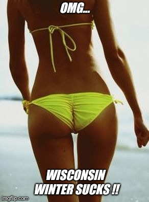 I'm so jealous  !!! | OMG... WISCONSIN WINTER SUCKS !! | image tagged in hot,summer,bikini,girl | made w/ Imgflip meme maker