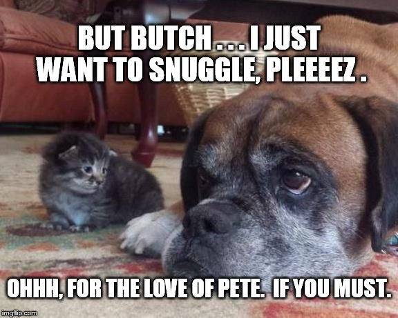 The things we do for friends. |  BUT BUTCH . . . I JUST WANT TO SNUGGLE, PLEEEEZ . OHHH, FOR THE LOVE OF PETE.  IF YOU MUST. | image tagged in making friends | made w/ Imgflip meme maker