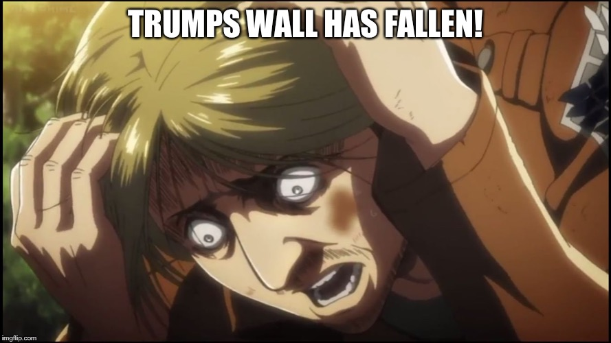 Scared Mike AOT | TRUMPS WALL HAS FALLEN! | image tagged in scared mike aot | made w/ Imgflip meme maker