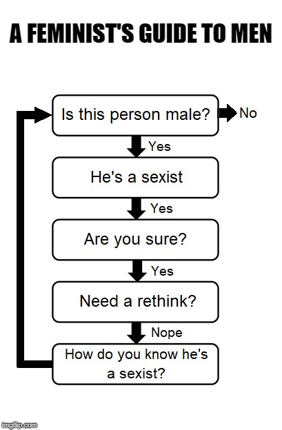 Feminism Flowchart  |  A FEMINIST'S GUIDE TO MEN | image tagged in feminism,women,men,rights | made w/ Imgflip meme maker