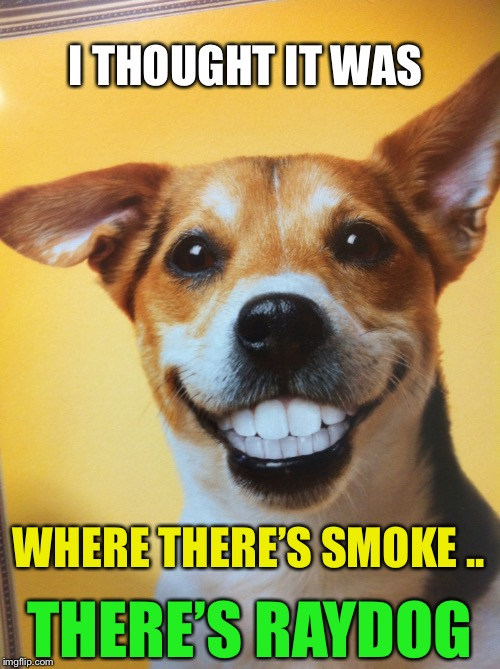 Raydog | I THOUGHT IT WAS WHERE THERE'S SMOKE .. THERE'S RAYDOG | image tagged in raydog | made w/ Imgflip meme maker