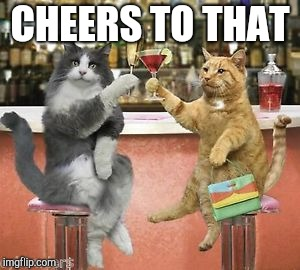 Party Cats | CHEERS TO THAT | image tagged in party cats | made w/ Imgflip meme maker