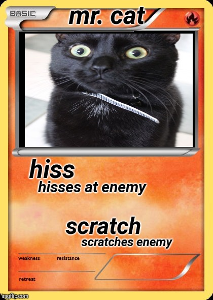 meow meow | hiss scratch hisses at enemy scratches enemy mr. cat | image tagged in blank pokemon card | made w/ Imgflip meme maker