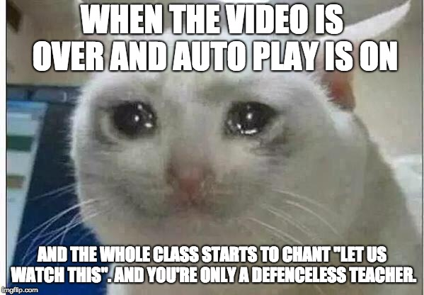 "crying cat | WHEN THE VIDEO IS OVER AND AUTO PLAY IS ON AND THE WHOLE CLASS STARTS TO CHANT ""LET US WATCH THIS"". AND YOU'RE ONLY A DEFENCELESS TEACHER. 