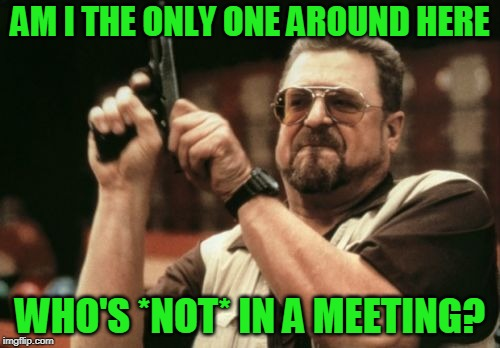 Am I The Only One Around Here Meme | AM I THE ONLY ONE AROUND HERE WHO'S *NOT* IN A MEETING? | image tagged in am i the only one around here,meeting | made w/ Imgflip meme maker