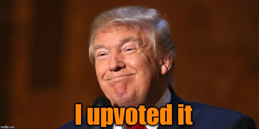 Donald Trump Smiling | I upvoted it | image tagged in donald trump smiling | made w/ Imgflip meme maker