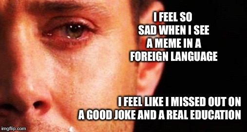 I FEEL SO SAD WHEN I SEE A MEME IN A FOREIGN LANGUAGE I FEEL LIKE I MISSED OUT ON A GOOD JOKE AND A REAL EDUCATION | image tagged in 1st rate imgflip problems | made w/ Imgflip meme maker