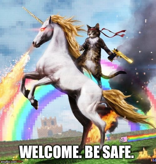 Welcome To The Internets Meme | WELCOME. BE SAFE. | image tagged in memes,welcome to the internets | made w/ Imgflip meme maker