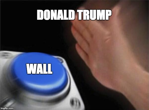 Blank Nut Button | DONALD TRUMP WALL | image tagged in memes,blank nut button | made w/ Imgflip meme maker