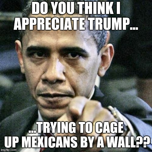 Pissed Off Obama | DO YOU THINK I APPRECIATE TRUMP... ...TRYING TO CAGE UP MEXICANS BY A WALL?? | image tagged in memes,pissed off obama | made w/ Imgflip meme maker