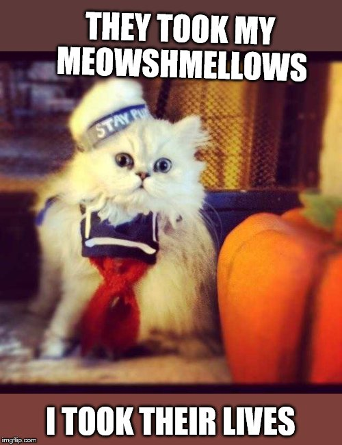 THEY TOOK MY MEOWSHMELLOWS I TOOK THEIR LIVES | made w/ Imgflip meme maker