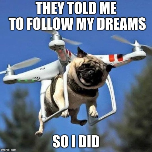 Flying Pug | THEY TOLD ME TO FOLLOW MY DREAMS SO I DID | image tagged in flying pug | made w/ Imgflip meme maker