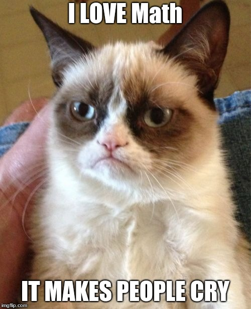 Grumpy Cat Meme | I LOVE Math IT MAKES PEOPLE CRY | image tagged in memes,grumpy cat | made w/ Imgflip meme maker