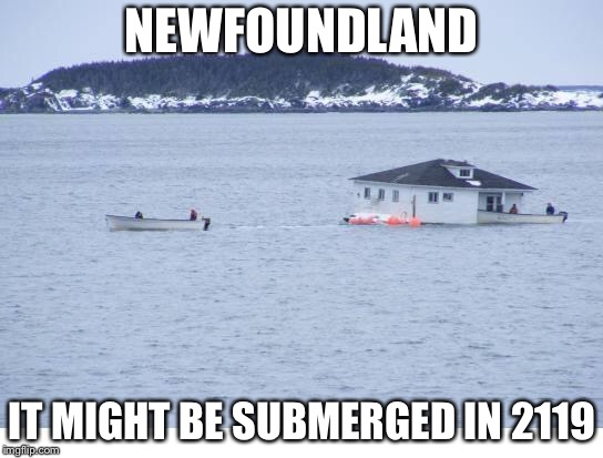 Newfoundland Maybe Dissappeared In 100 Years | NEWFOUNDLAND IT MIGHT BE SUBMERGED IN 2119 | image tagged in newfoundland,memes | made w/ Imgflip meme maker