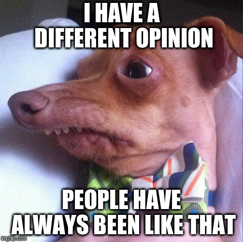 Tuna the dog (Phteven) | I HAVE A DIFFERENT OPINION PEOPLE HAVE ALWAYS BEEN LIKE THAT | image tagged in tuna the dog phteven | made w/ Imgflip meme maker