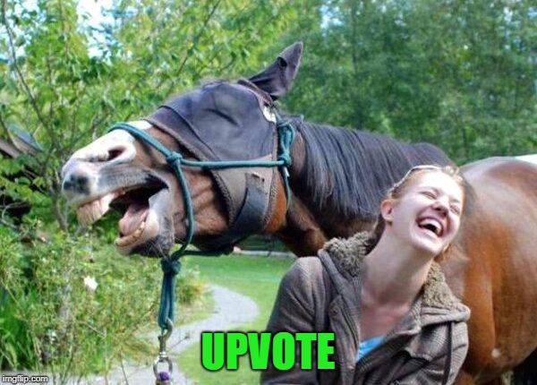 Laughing Horse | UPVOTE | image tagged in laughing horse | made w/ Imgflip meme maker