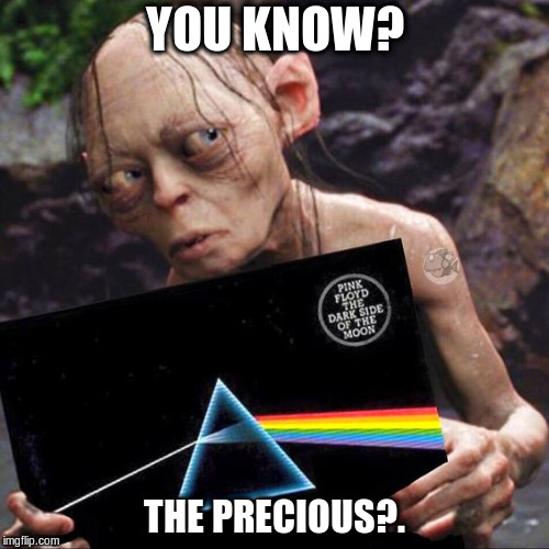 My Precious | YOU KNOW? THE PRECIOUS?. | image tagged in pink floyd,smeagol,my precious,funny meme | made w/ Imgflip meme maker