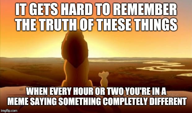 MUFASA AND SIMBA | IT GETS HARD TO REMEMBER THE TRUTH OF THESE THINGS WHEN EVERY HOUR OR TWO YOU'RE IN A MEME SAYING SOMETHING COMPLETELY DIFFERENT | image tagged in mufasa and simba | made w/ Imgflip meme maker
