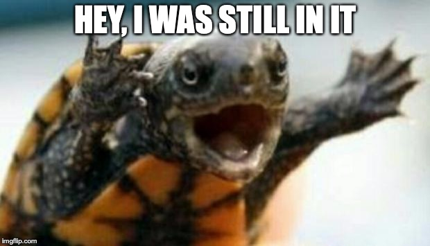 Turtle Say What? | HEY, I WAS STILL IN IT | image tagged in turtle say what | made w/ Imgflip meme maker