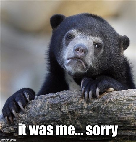 Confession Bear Meme | it was me... sorry | image tagged in memes,confession bear | made w/ Imgflip meme maker