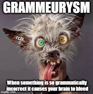 crazy chiwawa | GRAMMEURYSM When something is so grammatically incorrect it causes your brain to bleed rcl | image tagged in crazy chiwawa | made w/ Imgflip meme maker