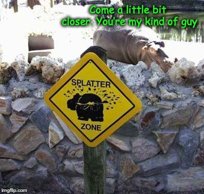 Patience | Come a little bit closer. You're my kind of guy | image tagged in hippopotamus,poop,zoo | made w/ Imgflip meme maker