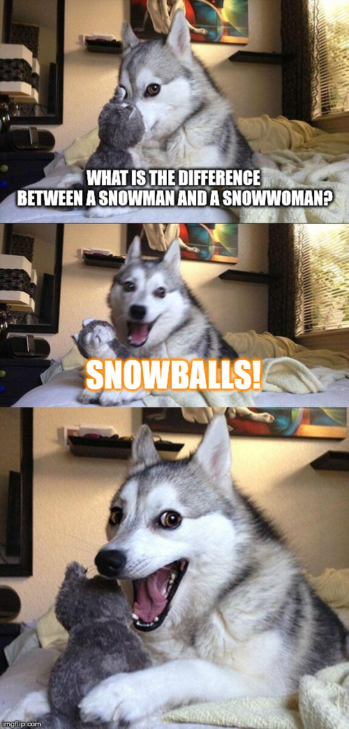 Bad Pun Dog Meme | WHAT IS THE DIFFERENCE BETWEEN A SNOWMAN AND A SNOWWOMAN? SNOWBALLS! | image tagged in memes,bad pun dog | made w/ Imgflip meme maker