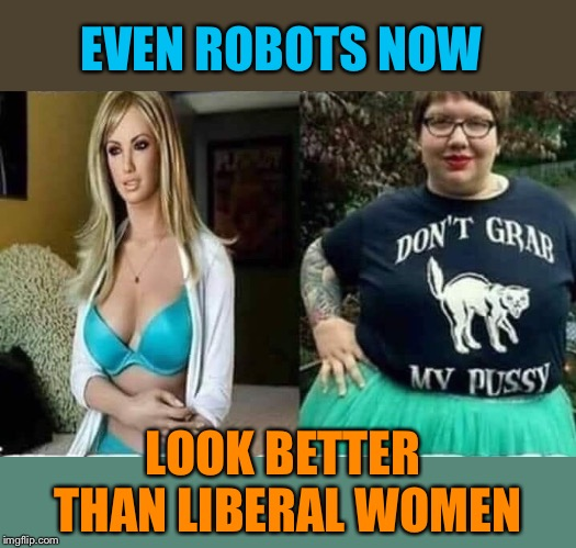 Sad but true | EVEN ROBOTS NOW LOOK BETTER THAN LIBERAL WOMEN | image tagged in robots,liberal,women,sad but true,funny,political memes | made w/ Imgflip meme maker