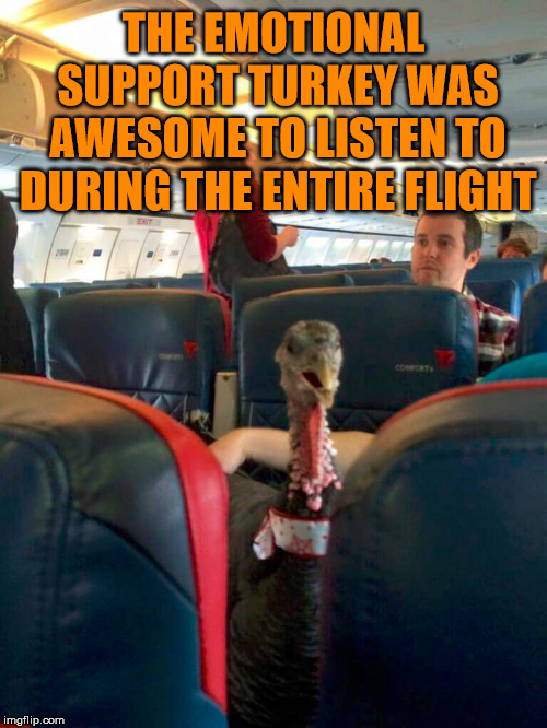 Sarcasm is my game.  | THE EMOTIONAL SUPPORT TURKEY WAS AWESOME TO LISTEN TO DURING THE ENTIRE FLIGHT | image tagged in meme,flight,turkey,irritated,frustrated,emotional | made w/ Imgflip meme maker