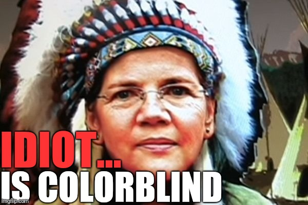 Elizabeth Warren in redface | IDIOT... IS COLORBLIND | image tagged in elizabeth warren,indian,idiot | made w/ Imgflip meme maker