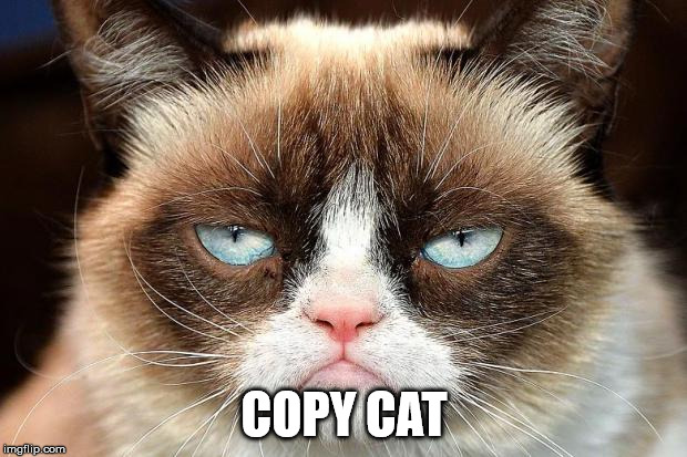 Grumpy Cat Not Amused Meme | COPY CAT | image tagged in memes,grumpy cat not amused,grumpy cat | made w/ Imgflip meme maker