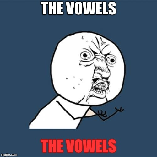 Y U No Meme | THE VOWELS THE VOWELS | image tagged in memes,y u no | made w/ Imgflip meme maker