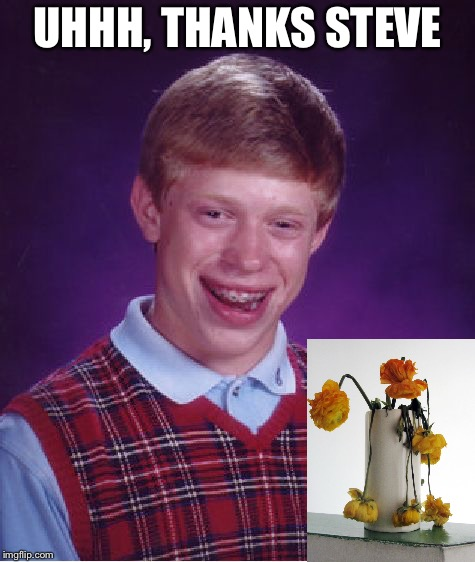 Bad Luck Brian Meme | UHHH, THANKS STEVE | image tagged in memes,bad luck brian | made w/ Imgflip meme maker