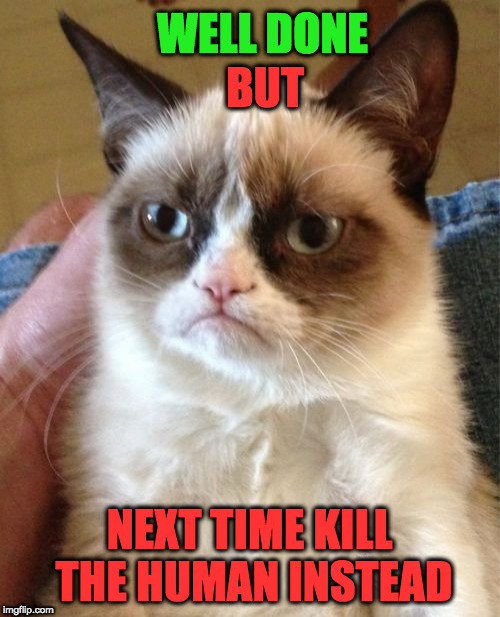 Grumpy Cat Meme | WELL DONE NEXT TIME KILL THE HUMAN INSTEAD BUT | image tagged in memes,grumpy cat | made w/ Imgflip meme maker