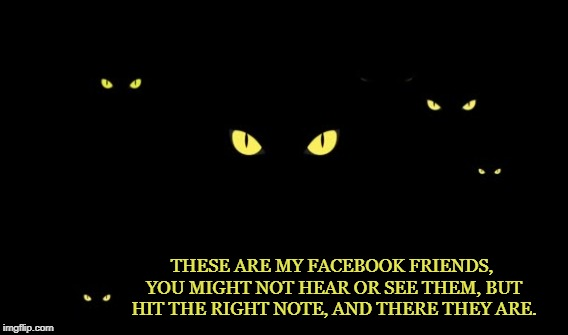 Facebook Friends | THESE ARE MY FACEBOOK FRIENDS, YOU MIGHT NOT HEAR OR SEE THEM, BUT HIT THE RIGHT NOTE, AND THERE THEY ARE. | image tagged in facebook,lurking,hidden,friends,friendship,social media | made w/ Imgflip meme maker